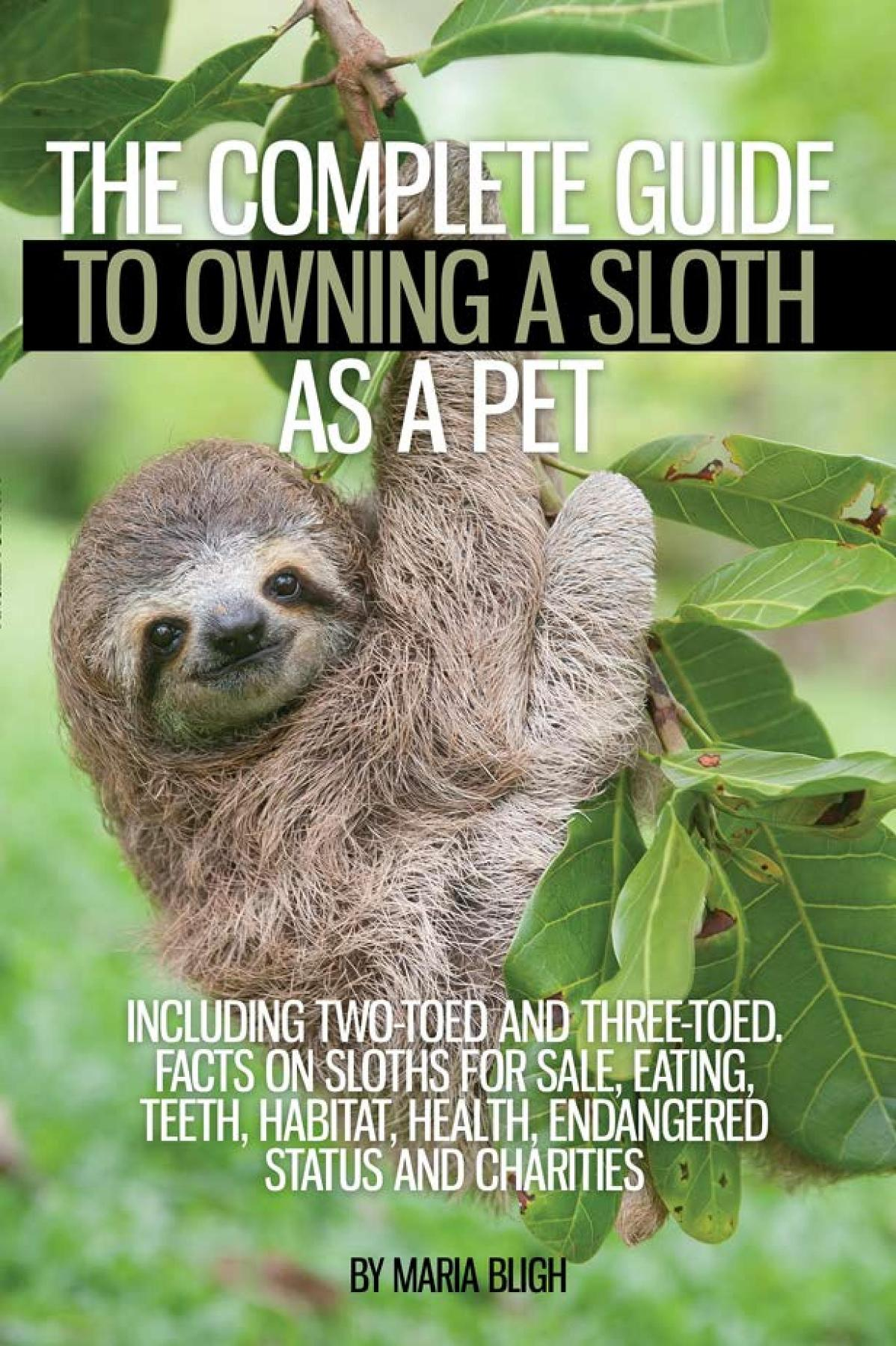 the characteristics and endangerment of sloths a type of mammal Endangered animals: three-toed sloth sloths are among the slowest-moving animals on earth they can swim but are virtually unable to walk this makes them an easy target for jaguars, eagles and people that hunt sloths for their meat.